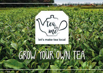 Tea by Me